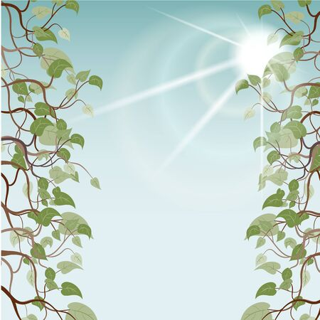 leafs in sun rays, vector illustration, EPS10 Vector