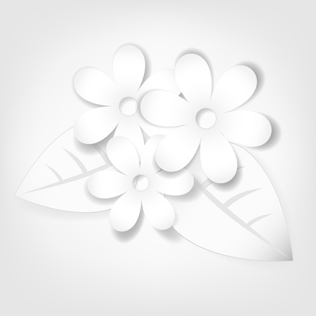 daisy wheel: Abstract paper flowers  Vector illustration
