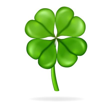 goodluck: Four leaf clover  Vector illustration  St  Patrick