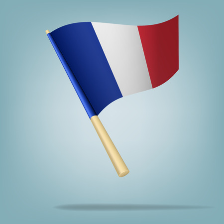 Flag of France  vector illustration Vector