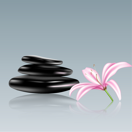 zen like: Spa stones and lily flower  Vector illustration