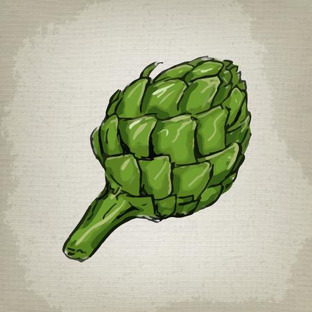 artichoke: A vector drawing of an artichoke Illustration