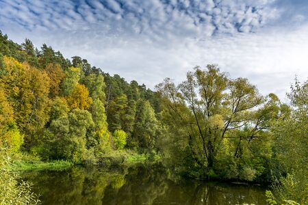 cloudy day: Beautiful autumn landscape, dry trees, cloudy sky, tree reflected in lake, seasons change, sunny day, autumnal park, fall nature