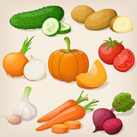 bell tomato: Set of vegetable. Vector illustrations