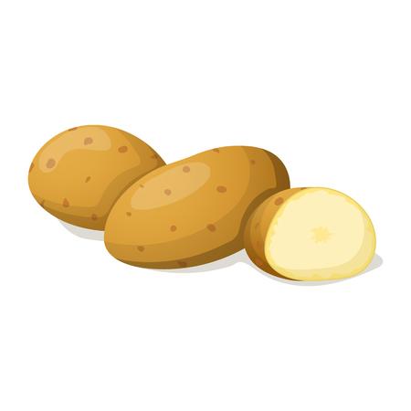 La patata aislado en blanco. ilustración vectorial
