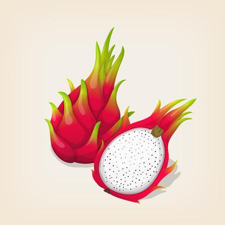 Rijpe exotische dragon fruit met plak. vector illustratie
