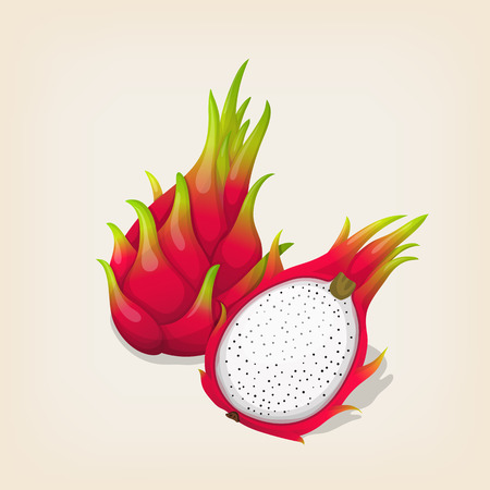 Ripe exotic dragon fruit with slice. Vector illustration