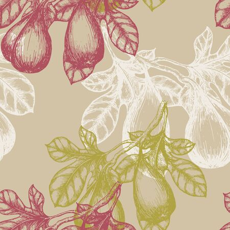 fig fruit: Fig Fruit on the branch hand draw sketch background pattern. Seamless pattern illustration.
