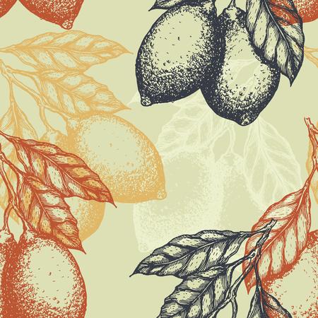 Lemons background. Linear graphic. Engraved citrus seamless pattern illustration