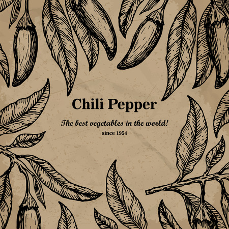 Chili package design element. Template for your design. Vector illustration.