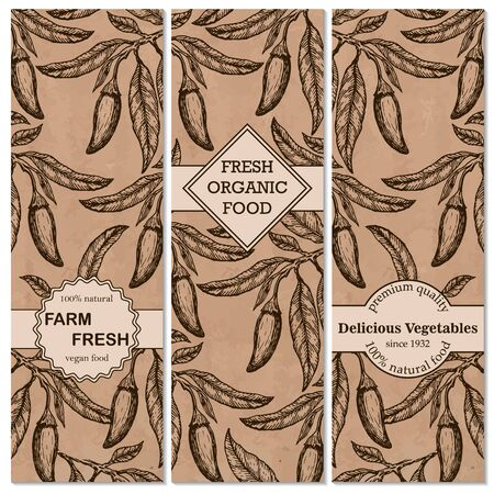 Template for label design with vintage sketched chili pepper. Can be used for vegan products, brochures, banner, restaurant menu, farmers market. Vector illustration. Illustration