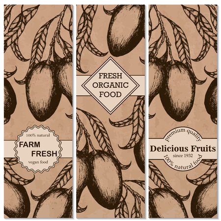 Mango vintage hand drawn vertical banners set. Vector illustration.