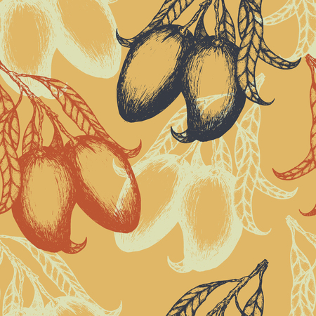 Seamless pattern with hand drawn mango fruits, design elements. Vector illustration.