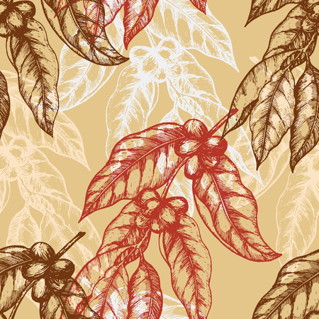 Seamless pattern based on engraving illustration of coffee branches with beans and leaves. Great for cafe, bars, coffee ads, wallpaper, wrapping paper. Vector illustration