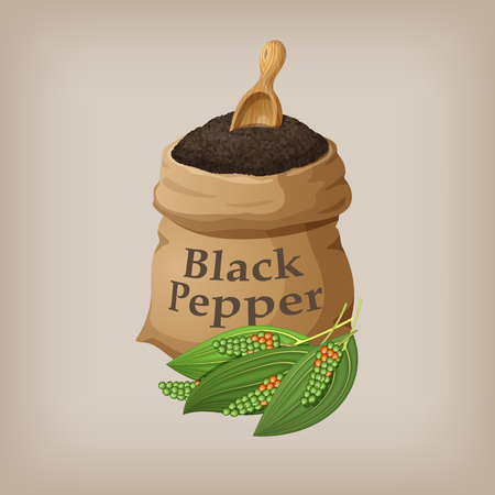 Black pepper in the bag. Vector illustration Stock Illustratie