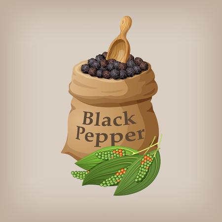 Black pepper corn in the bag. Vector illustration Vettoriali
