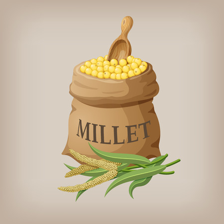 An image of raw yellow millets in a bag. Vector illustration