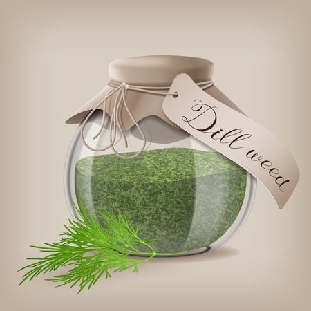 Dried dill weed in a glass jar with dill sprigs. Vector illustration EPS10 일러스트