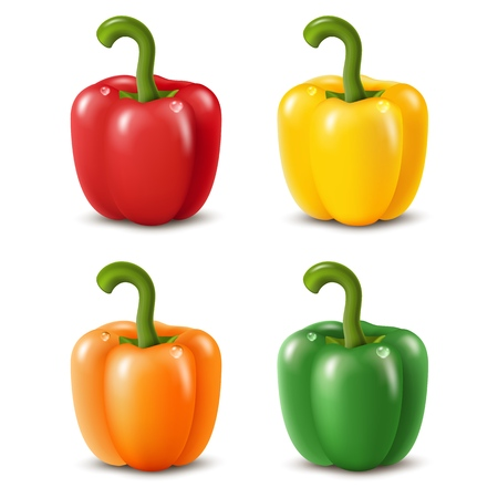 Colorful paprika peppers isolated on white. Vector illustration EPS10 Ilustrace