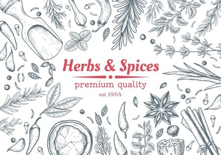 Spice and herbs top view frame. Spice and herbs design. Vintage hand drawn sketch vector illustration. Vector Design template. Vector card design with hand drawn spices and herbs. Иллюстрация