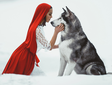 Girl in costume Little Red Riding Hood with dog malamute like a wolf.  She keeps dogs muzzle. On white background.