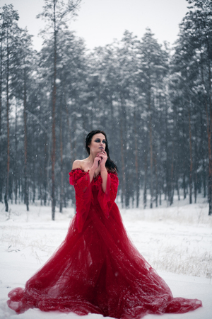 Girl in a red dress in a snowy forest. Her long dress lying on snow, and she looks thoughtfully. Around snow and snowflakes falling on the hem of her dress.