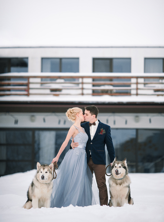 Bride and groom in winter with two dogs malamute on snow and home background. They are kissing. Stock Photo