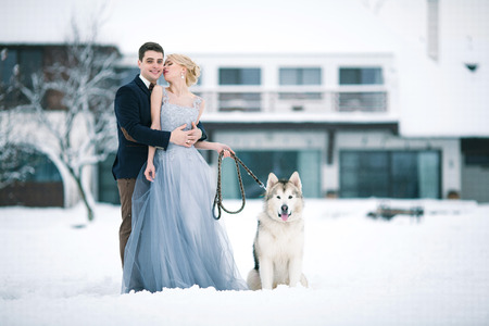 tenderly: Bride and groom in winter with dog malamute on snow and home background. Groom hugging bride, and she looks at him tenderly.