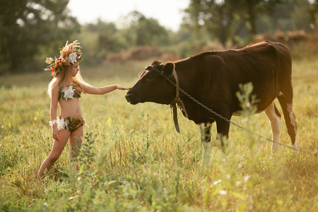 Beautiful little girl in image of nymph with floral head wreath stands on meadow near black cow on chain.