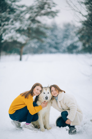 Two girls walk in a snowy forest with a dog Alaskan Malamute in winter.