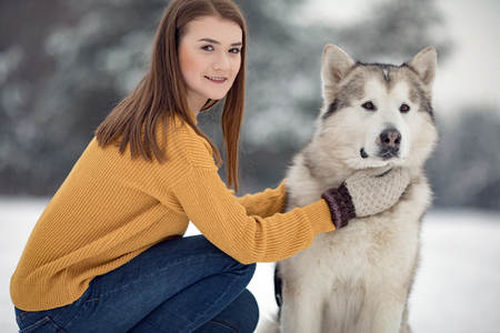 Girl sits next to a dog Alaskan Malamute and hugs his for a walk in winter. Closeup.