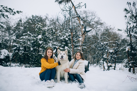 Two girls are sitting in the snow next to a dog Alaskan Malamute and hugs his for a walk in winter forest.