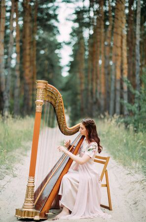 Woman harpist sits at forest road and plays harp in beautiful dress against a background of pines. Stock Photo