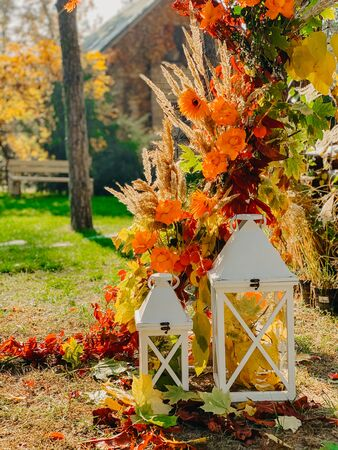 Part of a colorful wedding arch of autumn leaves, flowers and cereal ears on the background of the autumn forest. Closeup. Imagens