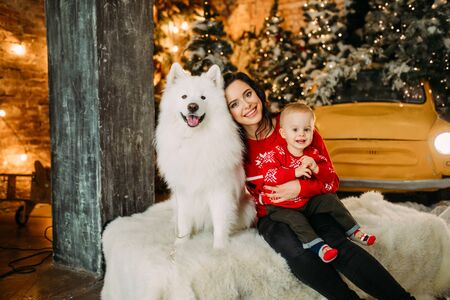 Mother and her son sit next to white samoyed dog and have a fun against background of Christmas tree and decorations.