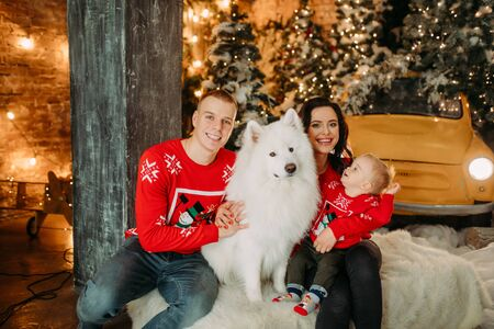 Family with little son sits next to white samoyed dog and has a fun against background of Christmas tree and decorations. Zdjęcie Seryjne - 136098822