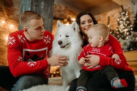 Family with little son sits next to white samoyed dog and has a fun against background of Christmas tree and decorations.