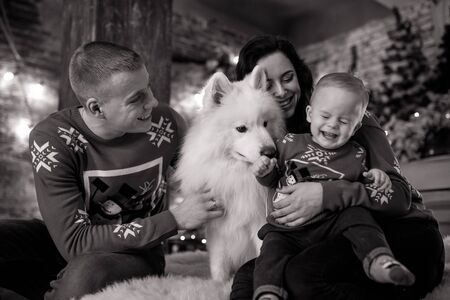 Family with little son sits next to white samoyed dog and has a fun against background of Christmas tree and decorations. Black and white image. Zdjęcie Seryjne