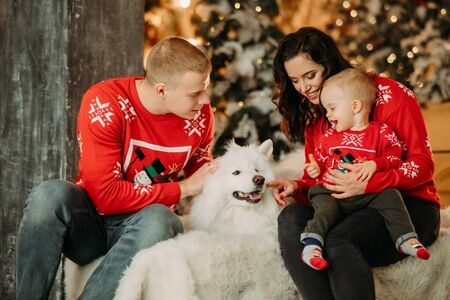Family with little son sits next to white samoyed dog and has a fun against background of Christmas tree and decorations. Zdjęcie Seryjne - 136098852
