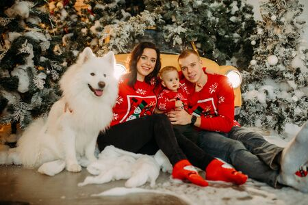 Happy family with little son sits next to white samoyed dog against background of Christmas tree and retro car. Zdjęcie Seryjne - 136099109