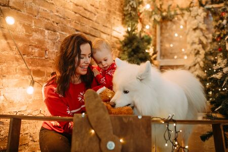 Mother and her son sit next to white samoyed dog against background of Christmas tree and decorations. Zdjęcie Seryjne - 136099114