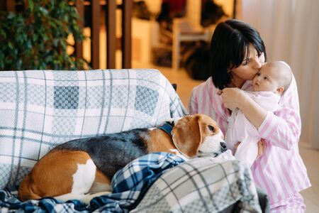 A mother in pajamas holds a baby in her arms and kisses him next to a lying on sofa dog. Zdjęcie Seryjne