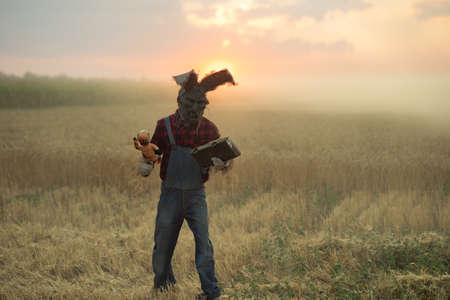 Man in image of sorcerer in hat with rabbit ears performs a voodoo ritual and holds doll impaled wire against sunset sky in field.