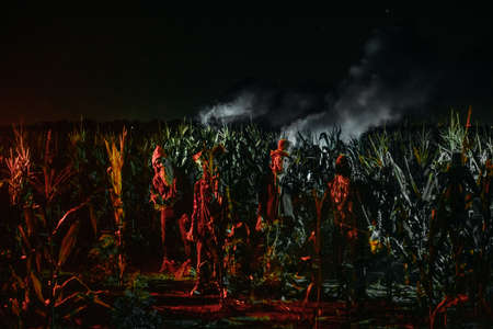 Four undead zombies stand at the edge of a cornfield at night.
