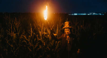 Walking dead zombie stands at the edge of a cornfield at night with burning torch in his hand. Panorama.