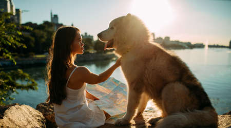 Young woman with innate disorder dwarfism sits on rocks with Malamute dog against background of river and city at sunset.