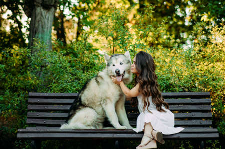 Young woman with innate disorder dwarfism sits on bench next to Malamute dog and hugs it while walking in park. Zdjęcie Seryjne