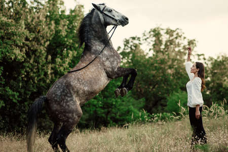 Young woman trains gray horse in pasture and it reared.