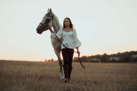 Young woman leads a white horse by the bridle through the pasture at sunset. Zdjęcie Seryjne