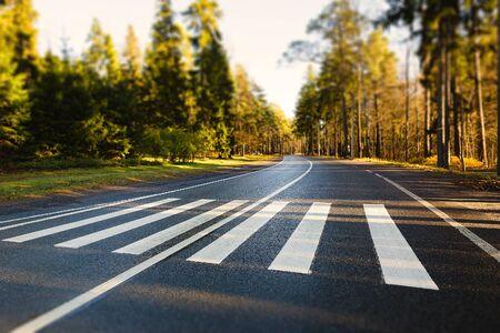 paso peatonal: paso de peatones en una carretera de bosque vacío Foto de archivo